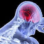 brain-gb49b73772_640